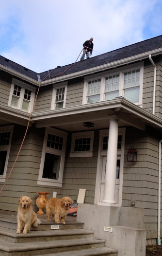 Rooftop moss removal service - Bainbridge Remodeling Group